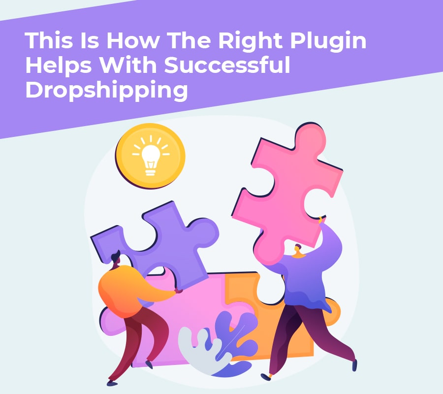 This is how the right plugin helps with successful dropshipping